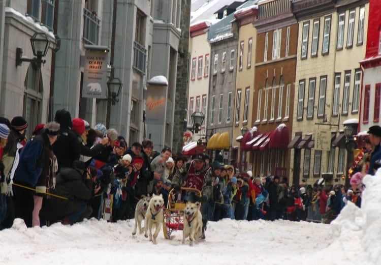Sled Dogs racing through Old Quebec at Carnival