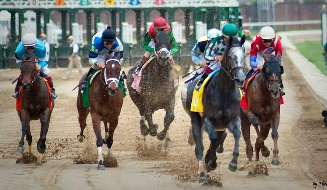 Kentucky Derby Finish Line Tour