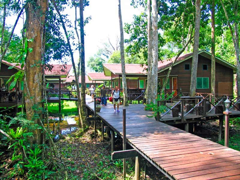 Abai Jungle resort walkway and buildings.