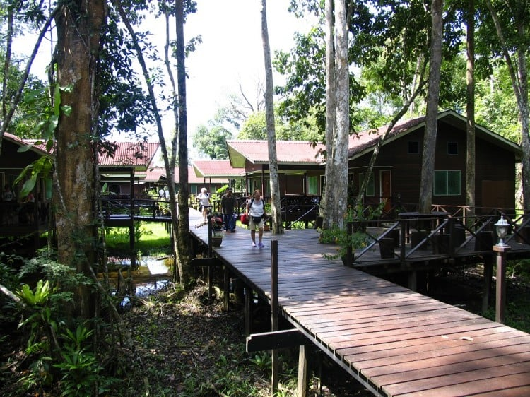 Abai Jungle resort walkway and buildings in Borneo, Malaysia.
