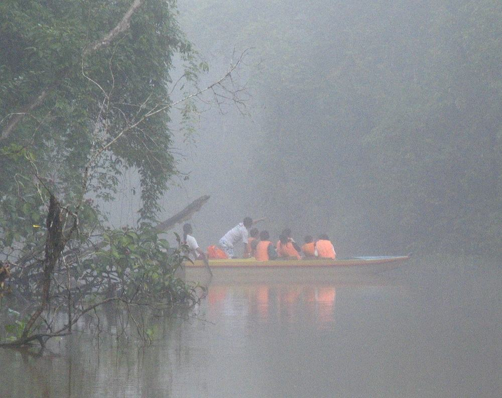 Boat ride on the Menanggul River to Pitas Lake in the early morning mists in Borneo, Malaysia.