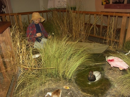 Sabine National Wildlife Refuge dioramas at the visitor's center starring T'Maurice, an old Cajun fisherman.
