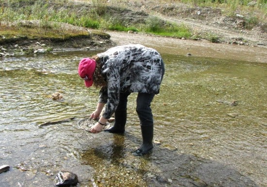 Linda Aksomitis panning for gold.
