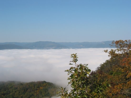 Fall colors and a thick fog show off the Blue Ridge Mountains!