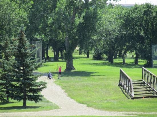 Golfer in Saskatchewan