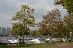 Wiggins Park & Marina