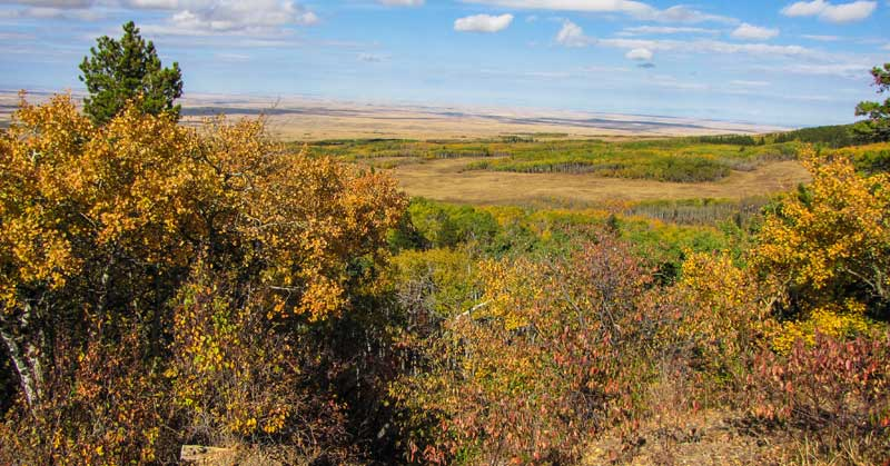 Cypress Hills, Saskatchewan, fall colors.