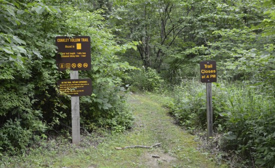 Coakley Hollow Self-Guiding Trail