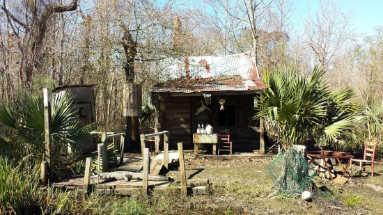 """Cajun Condo"" in the Manchac Swamp"