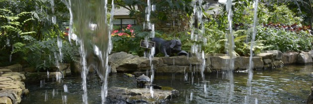 Huntsville Botanical Garden–Fun for the Whole Family