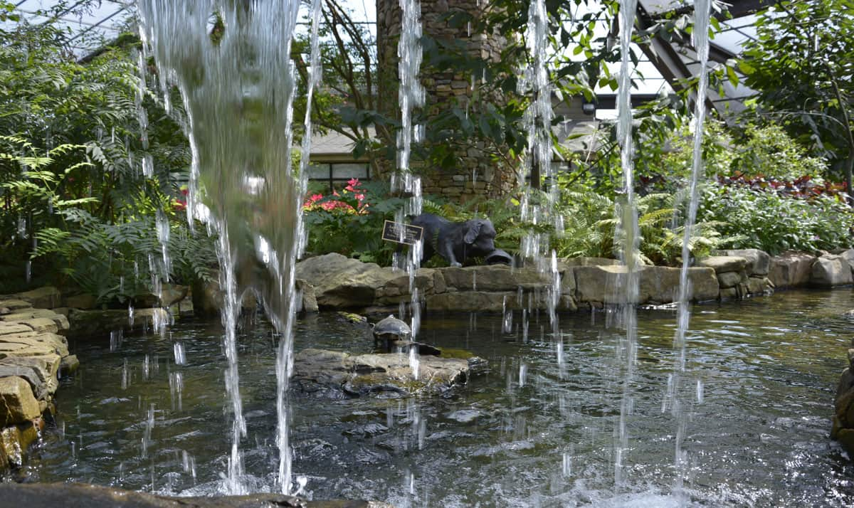 Huntsville Botanical Garden–Fun for the Whole Family