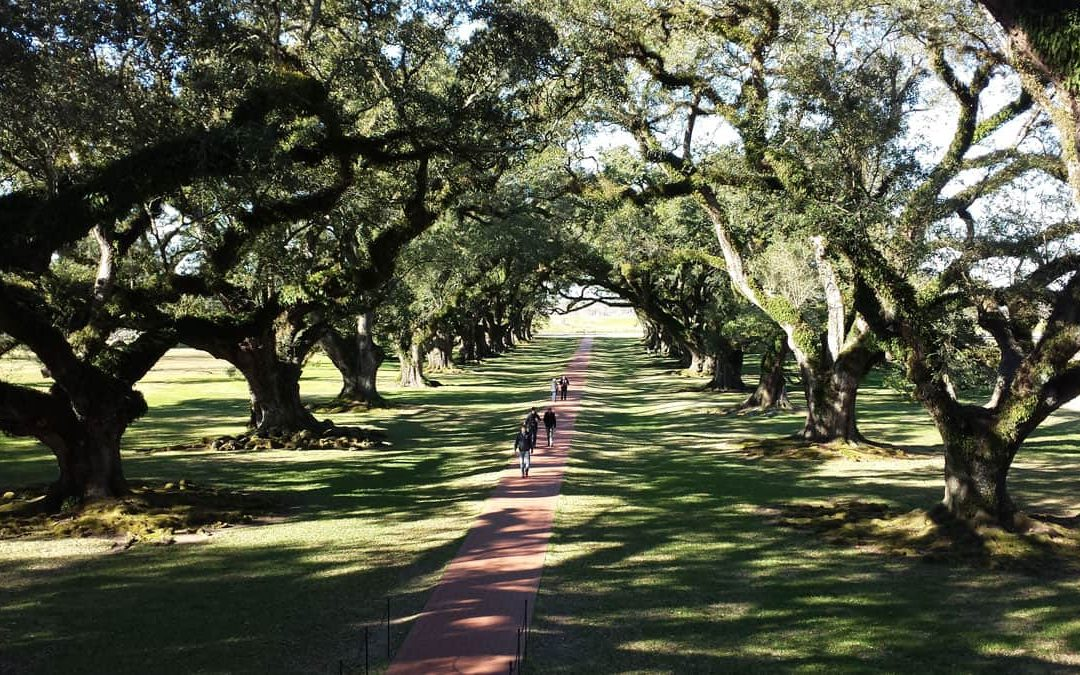 What Vampire Movie Starring Brad Pitt was Filmed at Oak Alley Plantation?