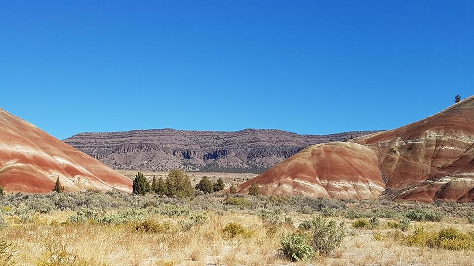 Painted Hills to Lava Rock to the Oregon Coast Highway — Road Trip
