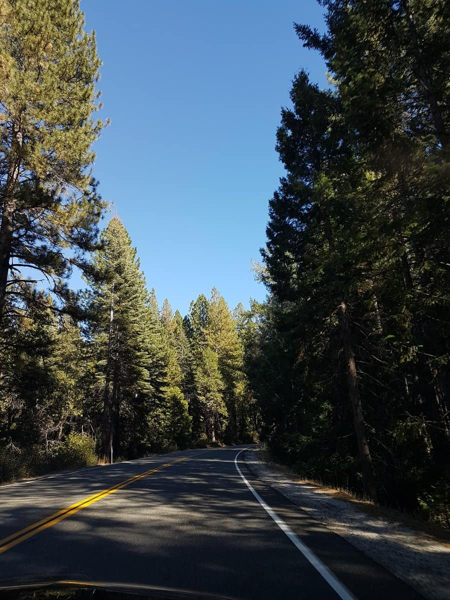 The Summit Reno >> Avenue of Giants to Tahoe National Forest to Donner Pass ...