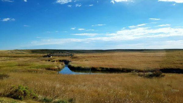 Saskatchewan near Cadillac.