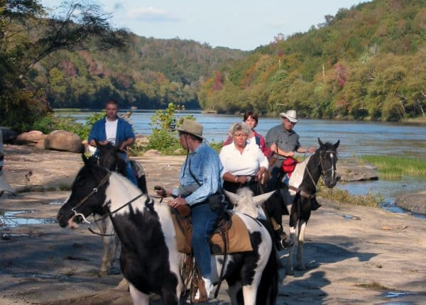 Horses on shore of Cumberland River.