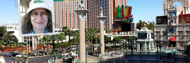 20 Interesting Facts About Las Vegas: Winter Getaway if You're in the Snow Zone