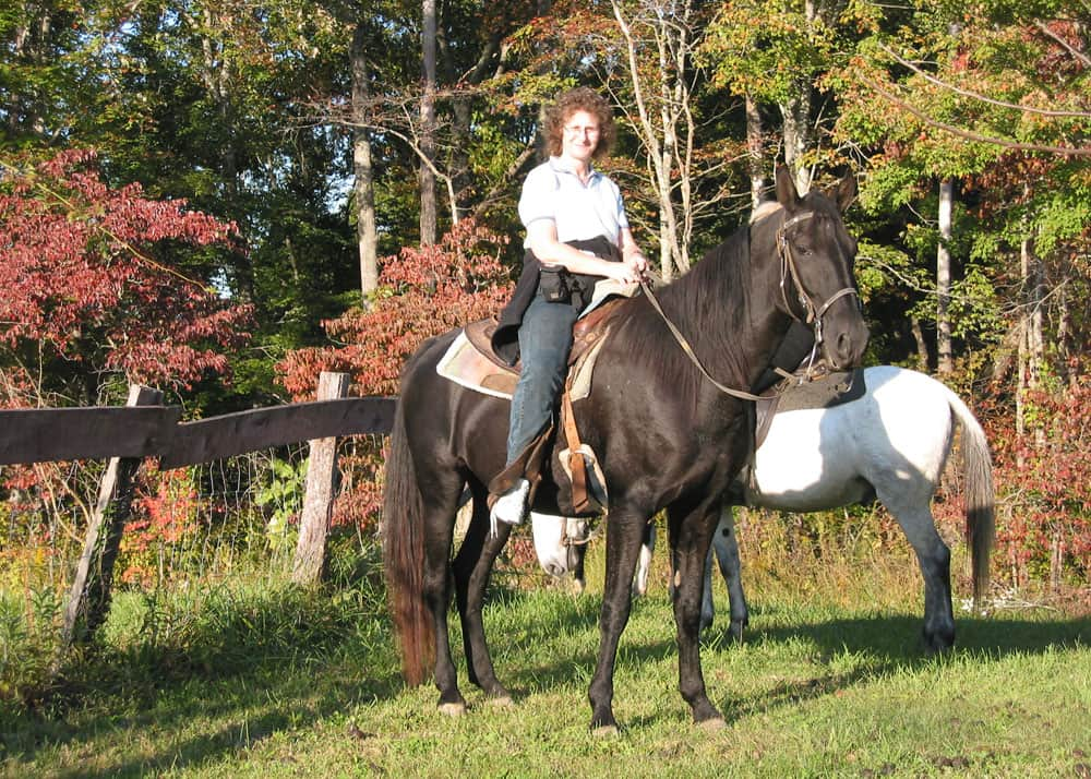 Edith, a Tennessee Walking Horse, owned by Bill's Riding Stables in Corbin, Kentucky.