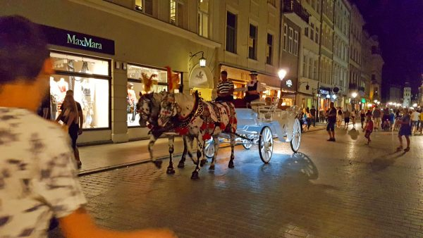 Team of appaloosa horses with a carriage in Old Town, Krakow.