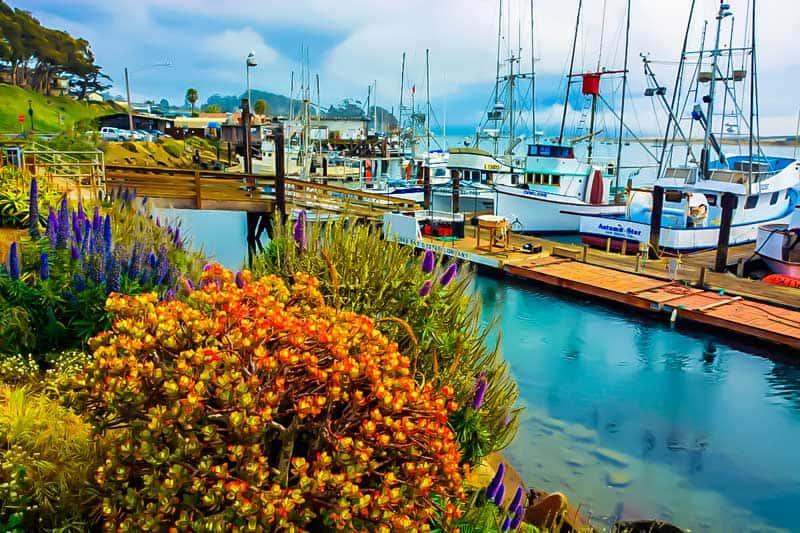 Boats in the marina along the shores of Morro Bay, California.