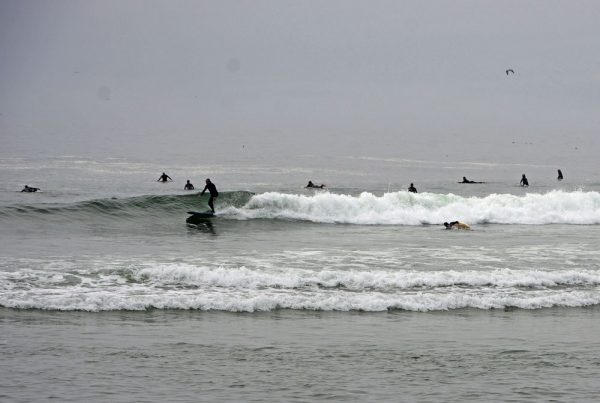 Surfers at Morro Beach, California.