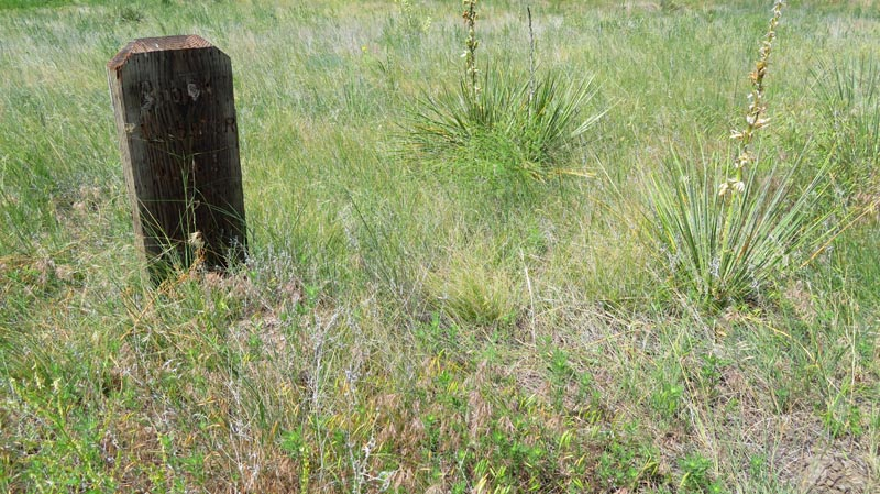 Grave marker in Boot Hill in the prairie grass and yucca plants.