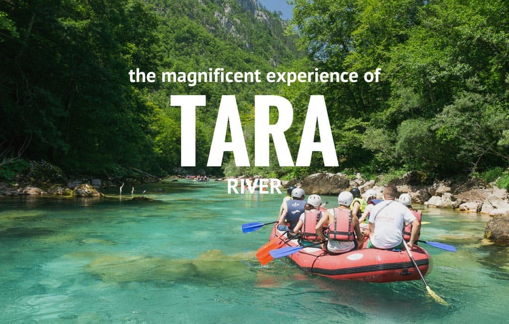 Whitewater Rafting Adventure with Rafting Tara — European Tours for Nature Lovers