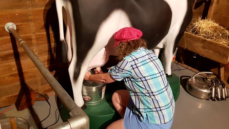 Linda Aksomitis milking a cow at Legacy of the Plains Museum