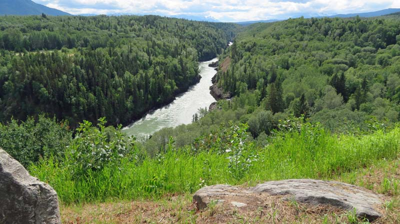 Bulkley River from the viewing area.