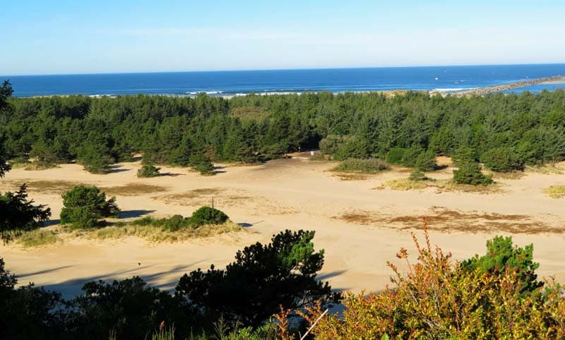 Oregon Dunes National Recreation Area.