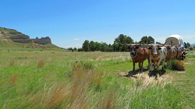Statues of team of oxen on the Oregon Trail.