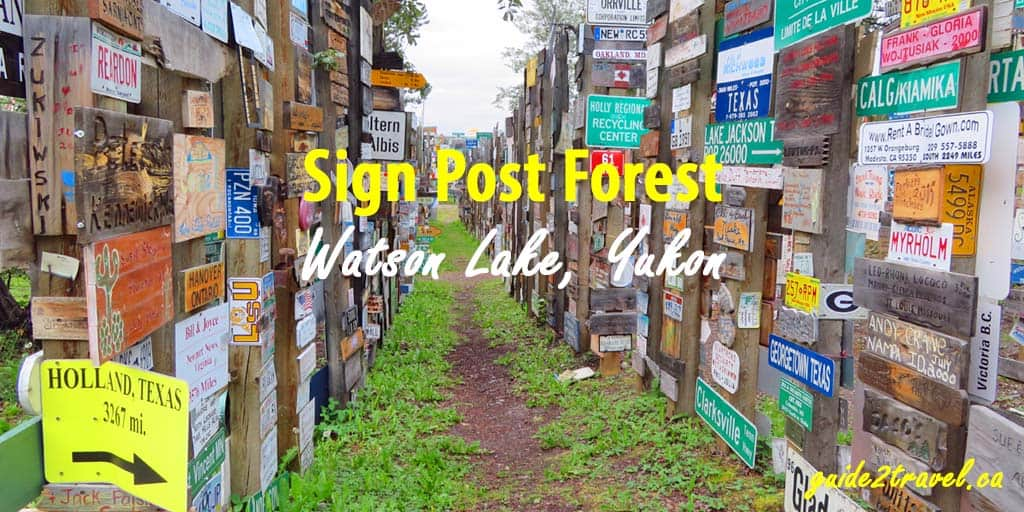 Walk Through the Sign Post Forest on the Alaska Highway