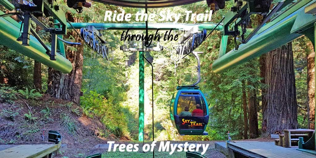 Hike the Unforgettable Giant Redwood Forest or Ride the Sky Trail