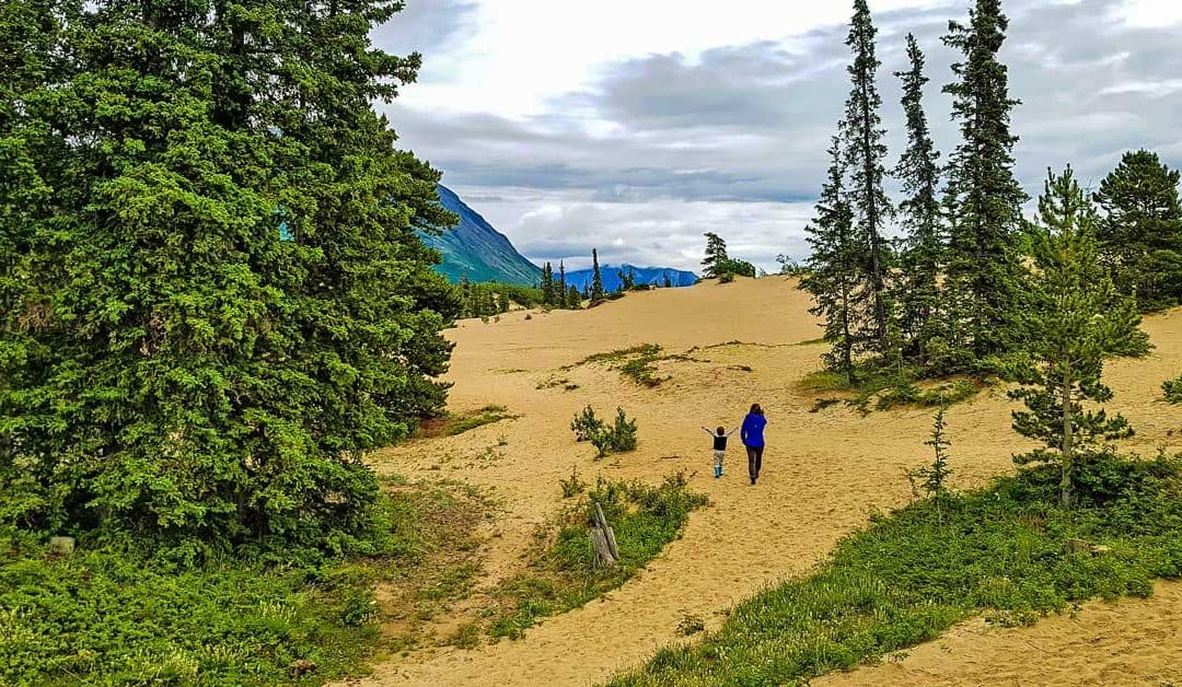 Is Carcross Desert the Smallest Desert in the World?