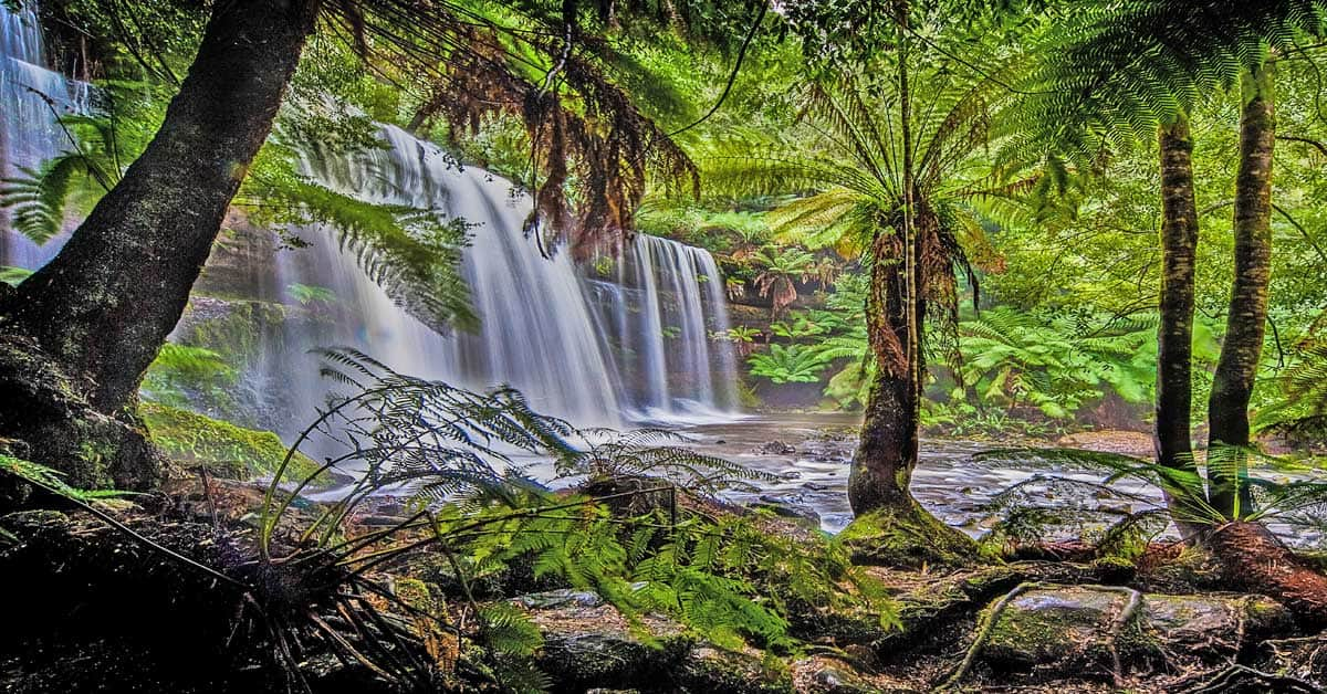 Waterfall in Tasmania, Australia.
