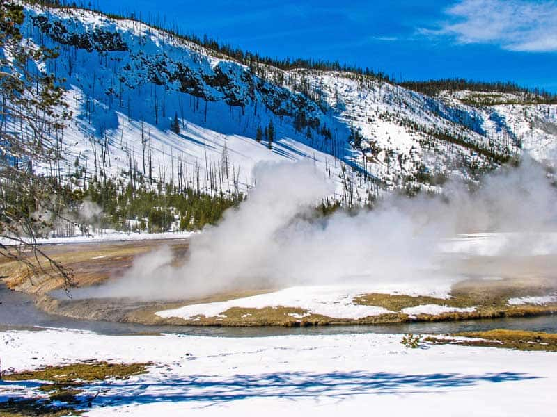 Cliff Geyser in Yellowstone National Park in the winter.