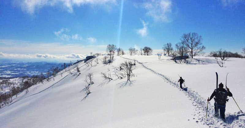 Skiers in Niseko, one of the most popular Japanese ski resorts.