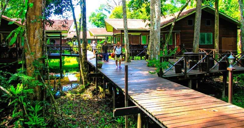Arriving at Abai Jungle Lodge.