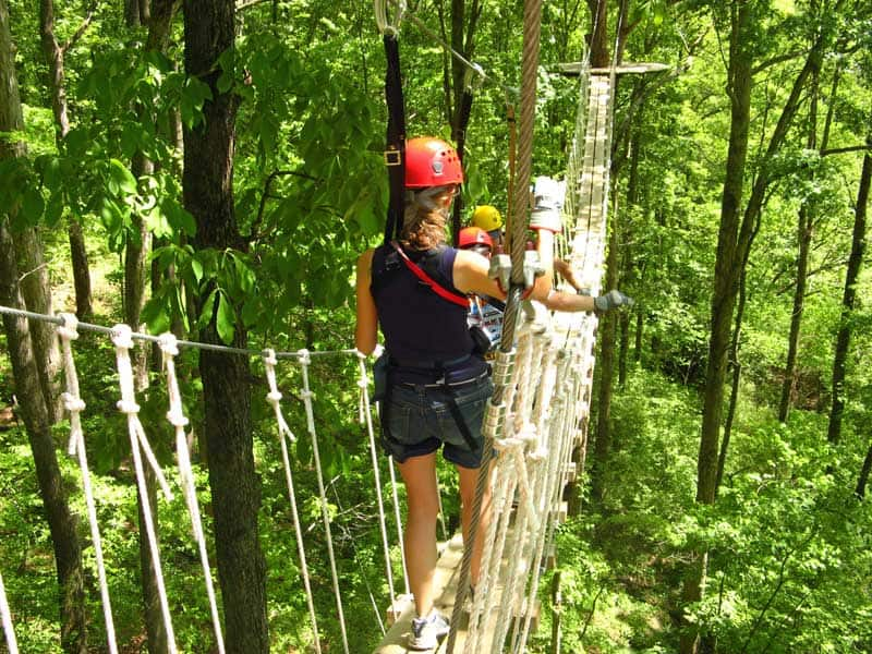 Swinging bridge at North Georgia Canopy Tours.