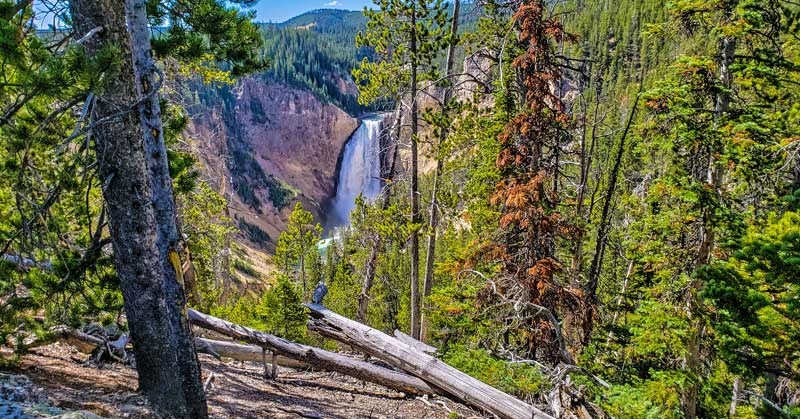 First view of the Grand Canyon of the Yellowstone off the North Rim Road in Yellowstone National Park.