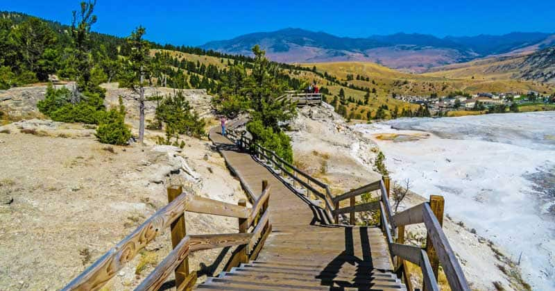 Boardwalk at Mammoth Springs in Yellowstone National Park.