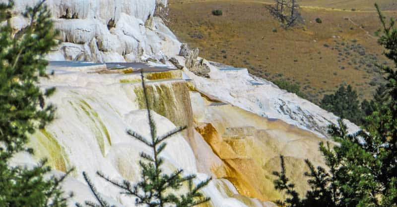 Mammoth Hot Springs in Yellowstone National Park.