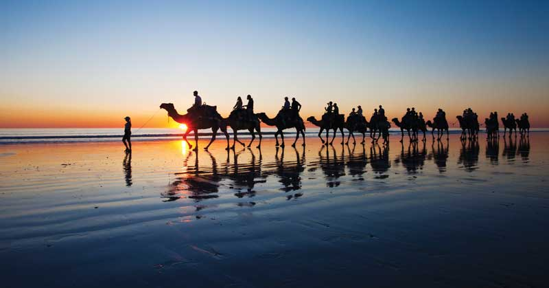Camel train on Cable Beach in the beach town of Broome in the Kimberley region of Northwest Australia.