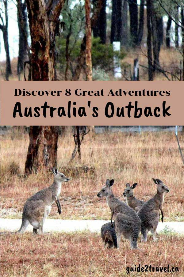 Discover 8 Great Adventures in Australia's Outback like sharing the roads with kangaroos.