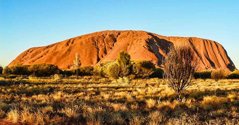 Australian Road Trips for Wildlife and Nature Lovers