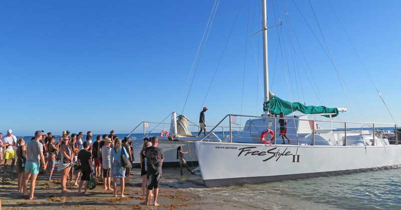 Boarding the Catamaran FreeStyle II boat in Puerta Plata, Dominican.