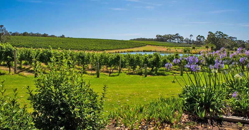 Margaret River Wine Country.