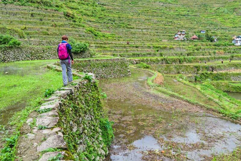 Walking on the Batad rice terraces.