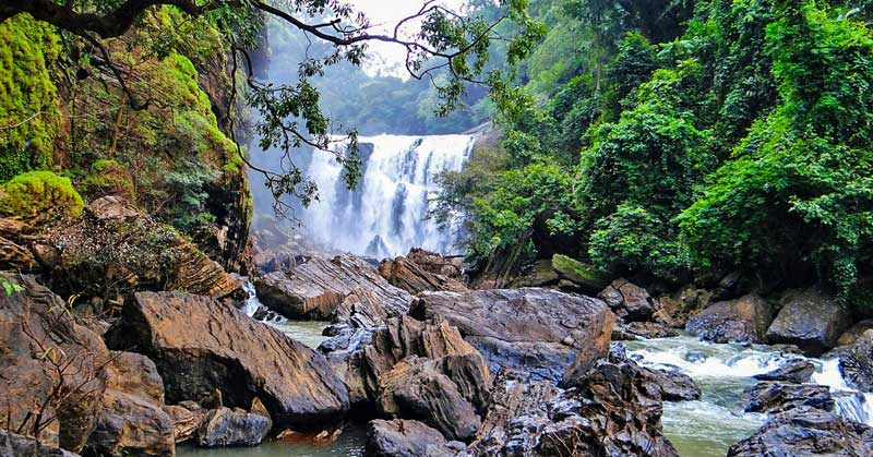 Sathodi Falls in the rainforests of the Western Ghats.