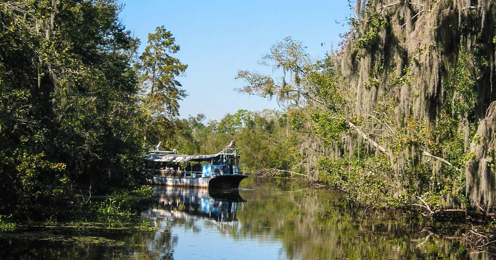 A swamp boat tour with Cajun Critters outside New Orleans.
